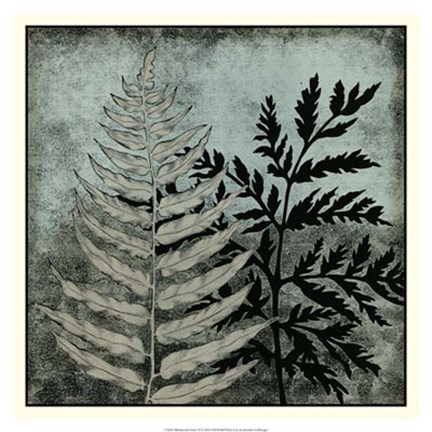 Framed Illuminated Ferns VI Print