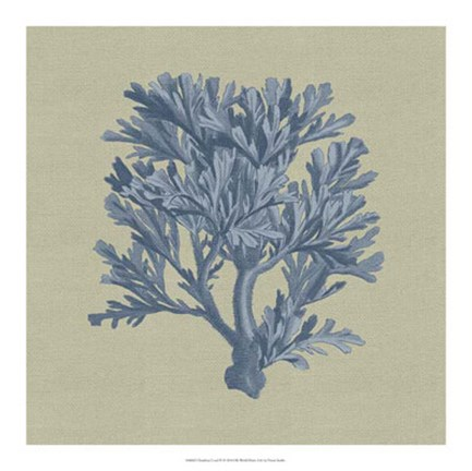 Framed Chambray Coral IV Print