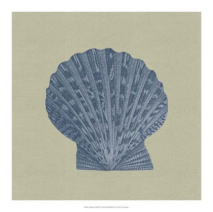 Framed Chambray Shells IV Print