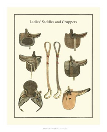 Framed Ladies Saddles Print