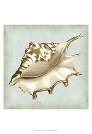 Framed Sea Dream Shells IV Print