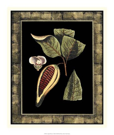 Framed Tropical Bounty I Print