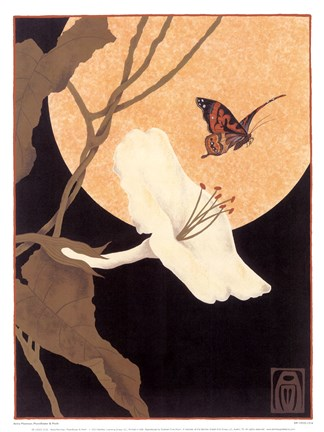 Framed Moonflower & Moth Print
