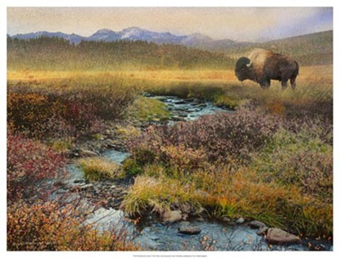 Framed Bison & Creek Print