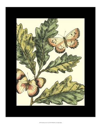 Framed Butterflies & Leaves III Print