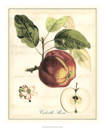 Framed Tuscan Fruits I Print