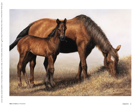 Framed Mare and Foal Print
