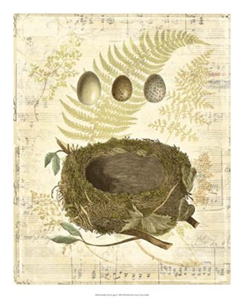 Framed Melodic Nest & Eggs I Print