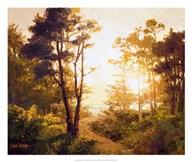 Gilded Pathway  Fine Art Print