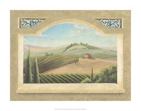 Framed Vineyard Window III Print