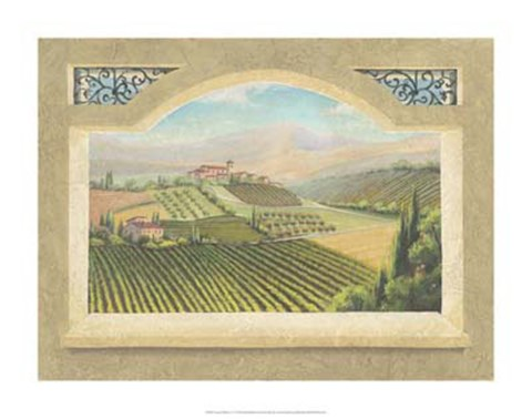 Framed Vineyard Window IV Print