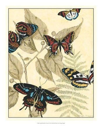 Framed Graphic Butterflies in Nature II Print