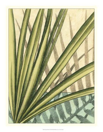 Framed Tropical Shade II Print