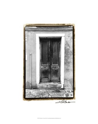 Framed Doors of Venice II Print