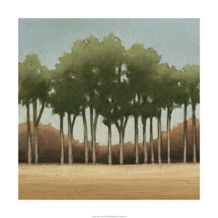 Framed Stand of Trees II Print