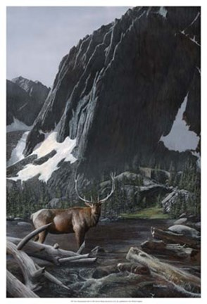 Framed Mountainside Elk I Print