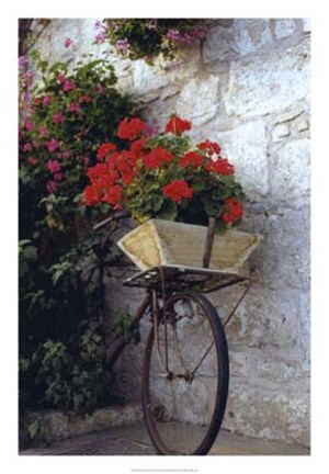 Framed Flower Box Bike Print