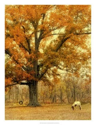 Framed Autumn Grazing Print