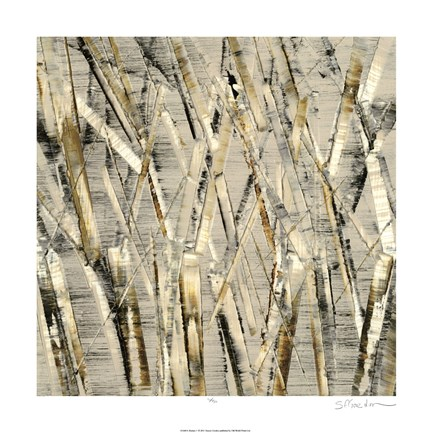 Framed Birches V Print