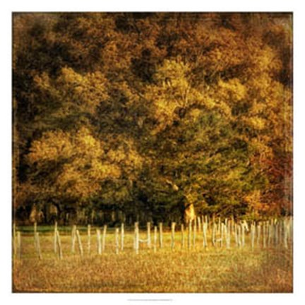 Framed Fence Row Print