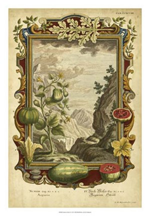 Framed Genesis Fruits II Print