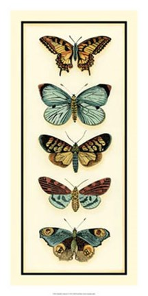 Framed Butterfly Collector VI Print