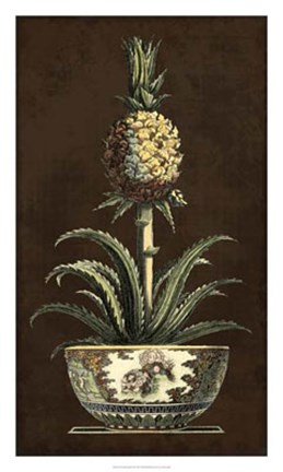 Framed Potted Pineapple II Print