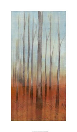 Framed Birch Forest II Print
