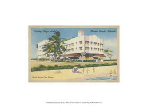 Framed Miami Beach IV Print
