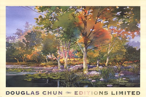 Birch Pond Fine Art Print By Douglas Chun At
