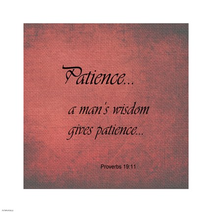 Framed Patience Proverbs 19:11 Print