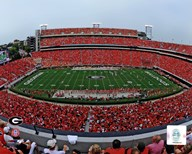 Sanford Stadium Univserity of Georgia Bulldogs 2012  Fine Art Print