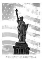 Liberty Flag  Fine Art Print