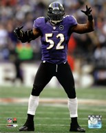 Ray Lewis dances at the end of his final game in Baltimore, January 6, 2013  Fine Art Print