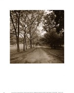 Country Road  Fine Art Print