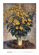 Jerusalem Artichoke Flowers, 1880 Art