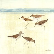 Sand Pipers Square II Art