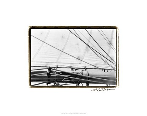Framed Under Sail IV Print