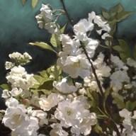 White Roses III  Fine Art Print