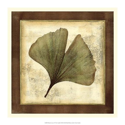 Framed Rustic Leaves IV - No Crackle Print