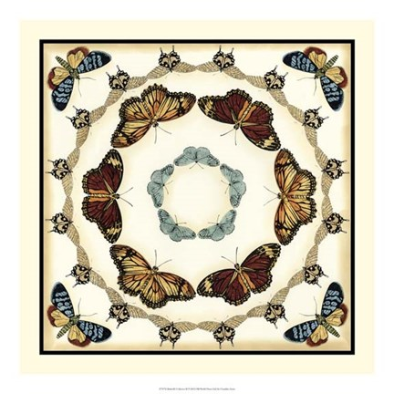 Framed Butterfly Collector II Print