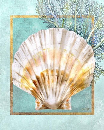 Framed Scallop Shell and Coral Print