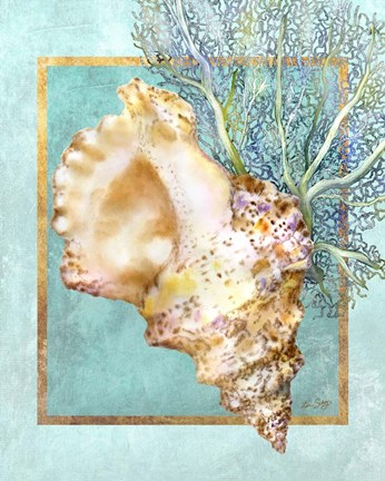 Framed Conch Shell and Coral Print