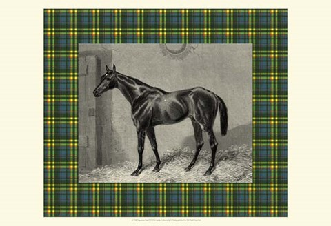 Framed Equestrian Plaid II Print