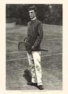Harper's Weekly Tennis IV  Fine Art Print