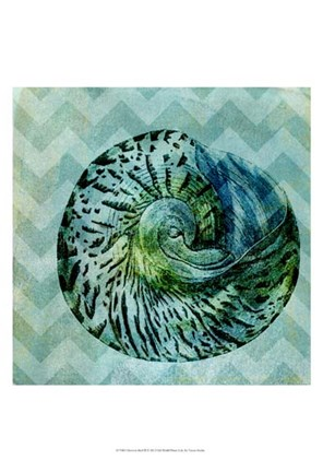 Framed Chevron Shell II Print