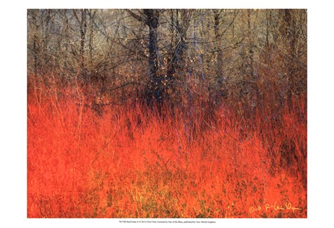 Framed Red Grass II Print