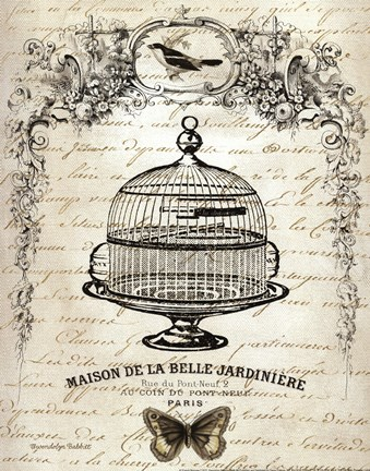 Framed French Birdcage I Print