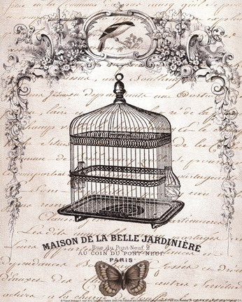 Framed French Birdcage II - mini Print