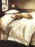 A Dog's Life  Fine Art Print